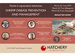 Register for next week's webinar on hatchery shrimp disease management