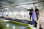 Alltech Coppens expanded aqua center to focus on RAS