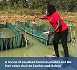 A review of aquafeed value chain in Zambia and Malawi