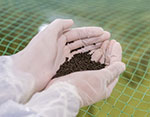 Salmofood highlights salmon results at Cermaq centers