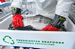 Fredrikstad Seafoods and BioMar extend their agreement for RAS feeds