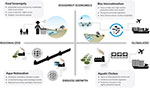 Aquaculture's role in nutrition in the COVID-19 era
