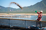 USSEC convenes Global Aquaculture Industry Advisory Council to dive into shaping a sustainable aquaculture industry