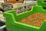 EU authorizes insect proteins in poultry and pig feed