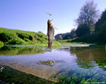 Insect-based aquafeeds don't change the taste of salmon and trout
