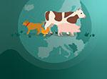 Continued decrease in sales of veterinary antibiotics in Europe