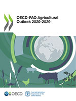 Increasing uncertainties of medium-term agricultural prospects due to COVID-19