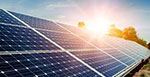 Soja de Portugal increases electricity consumption from renewable sources