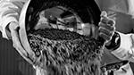 Agronutris raises €100 million to scaleup production