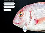 Aquasoja develops feed for a colorful red porgy