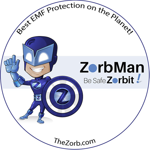Image: ZorbMan Mascot