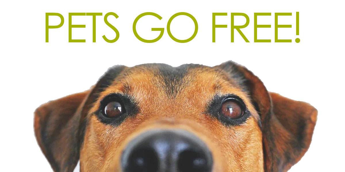 Pets Go Free! (Picture of dog)