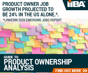 Product Owner Job Growth