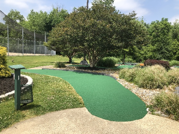 new mini golf carpet hole #1
