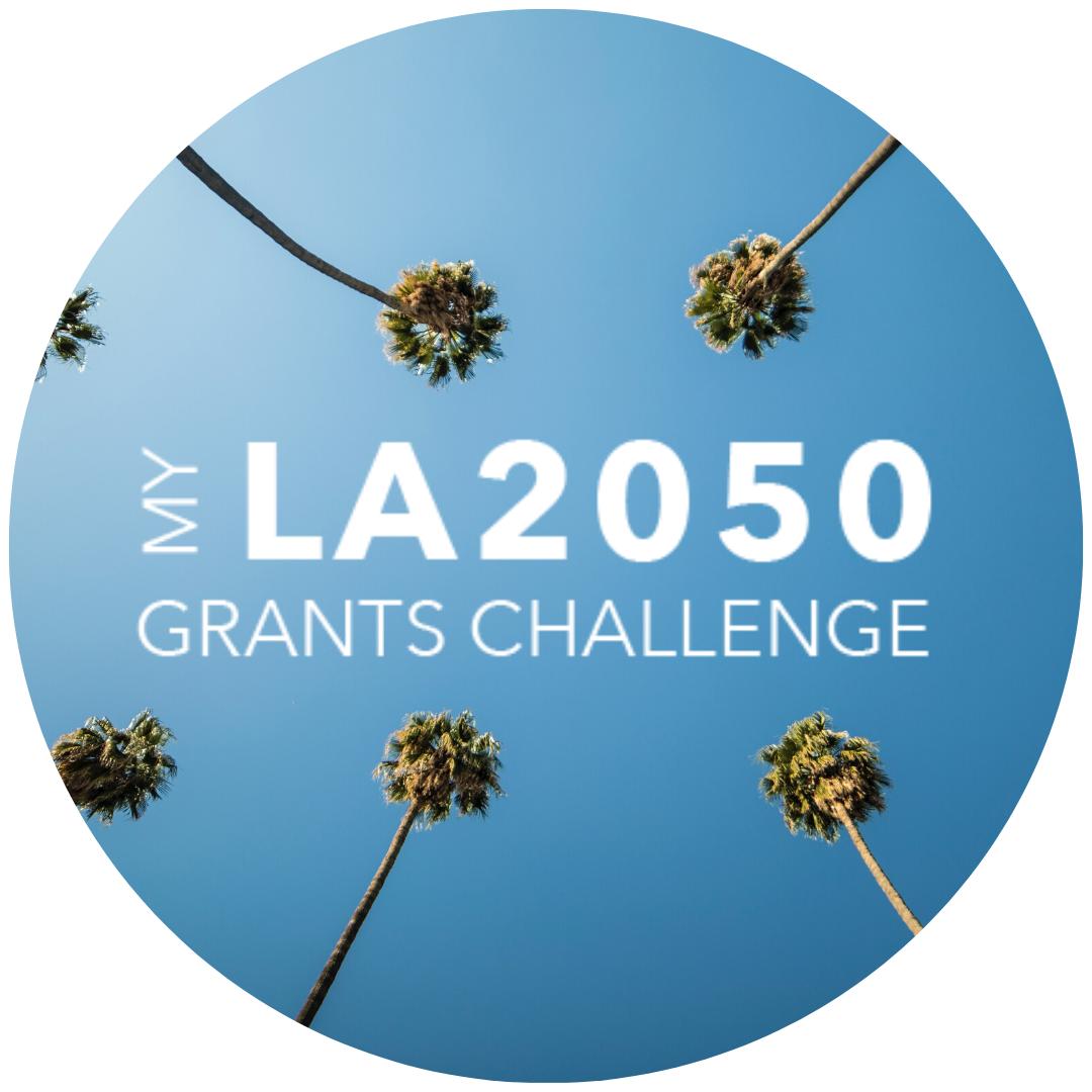 My LA2050 Grants Challenge
