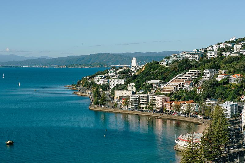 Wellington Walks Oriental bay