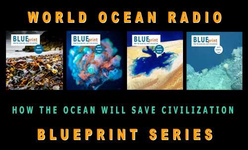 Ocean Curriculum Catalog