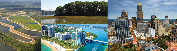 Collage of city and rural areas
