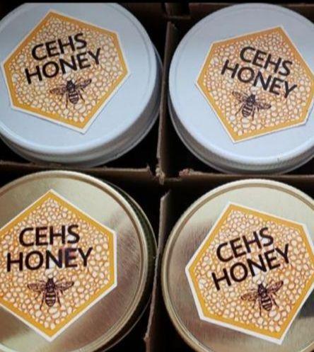 CEEF CEHS Beekeeping Club Grant