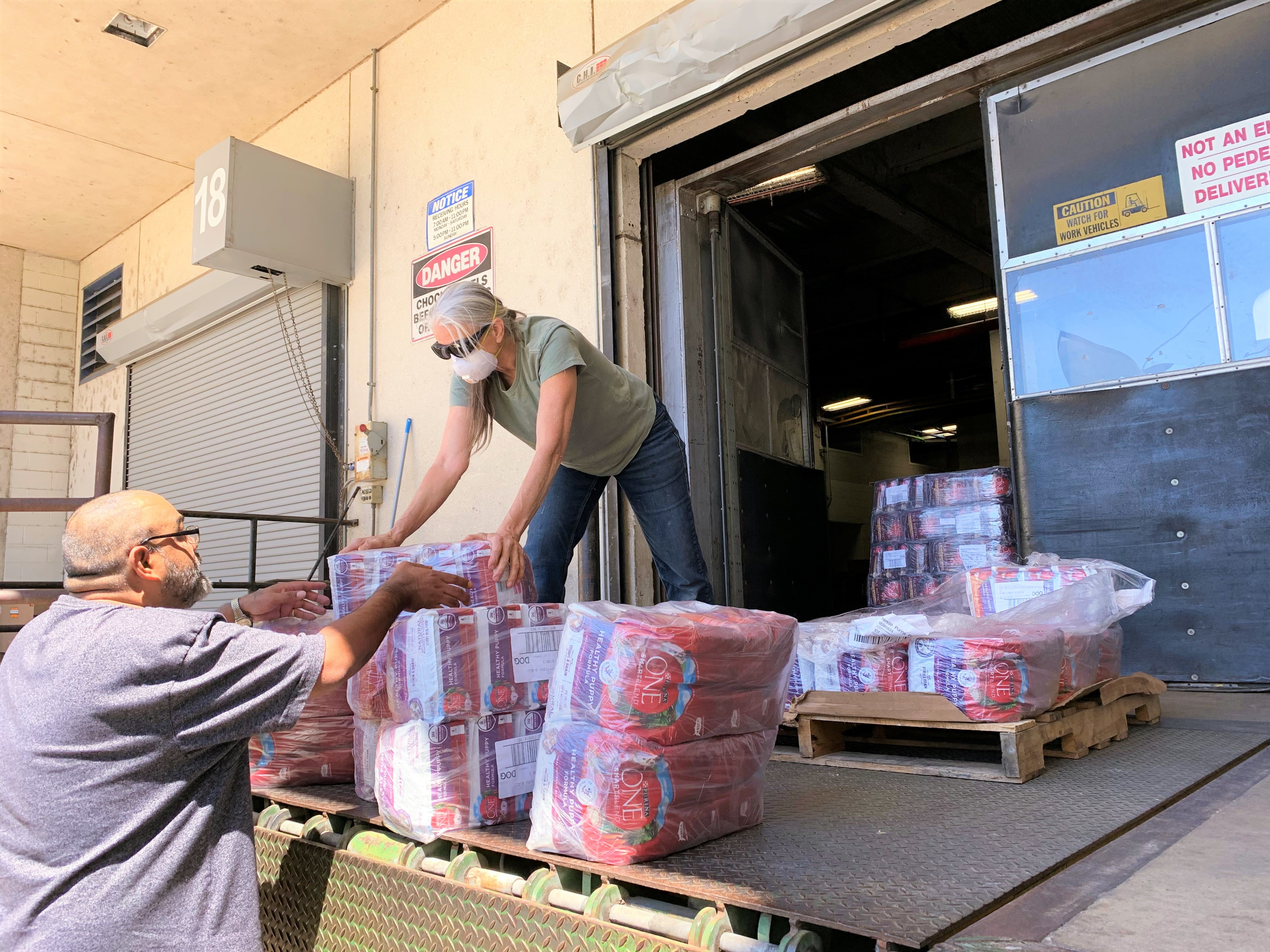 Woman and man load shrink wrapped bags of Purina ONE dog food from loading dock.