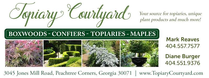 topiary courtyard specimen plants