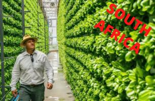 CAN-AGRI Vertical Farming