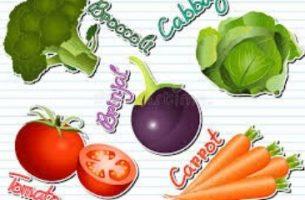 Farming Winter Vegetables