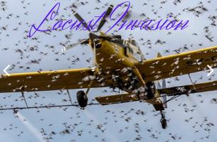 AirTractor controlling locusts in KENYA