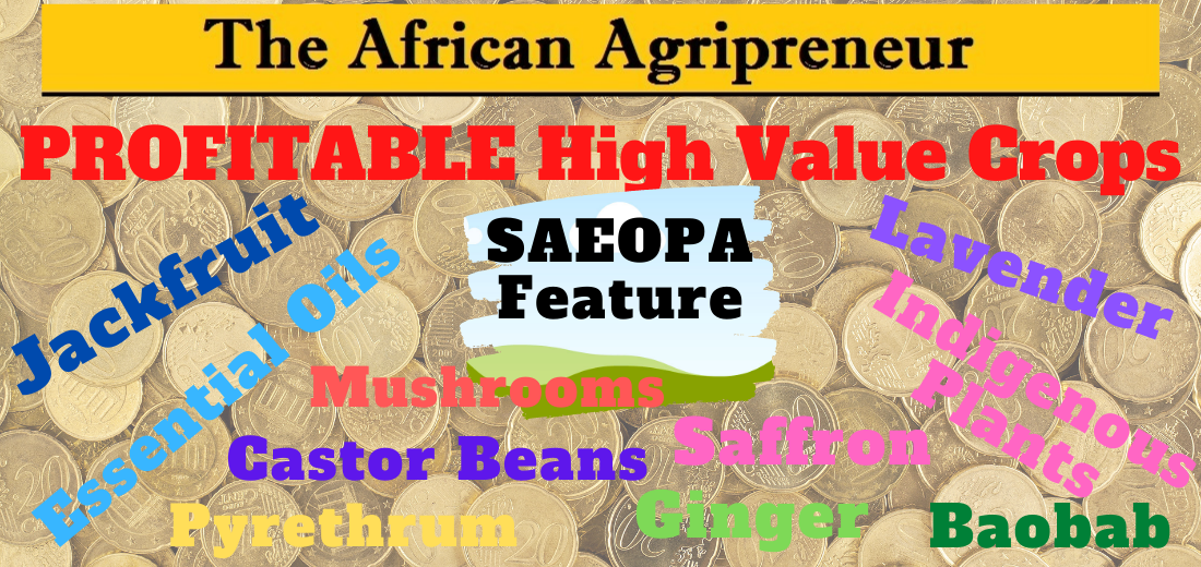 Profitable High Value Crops Header