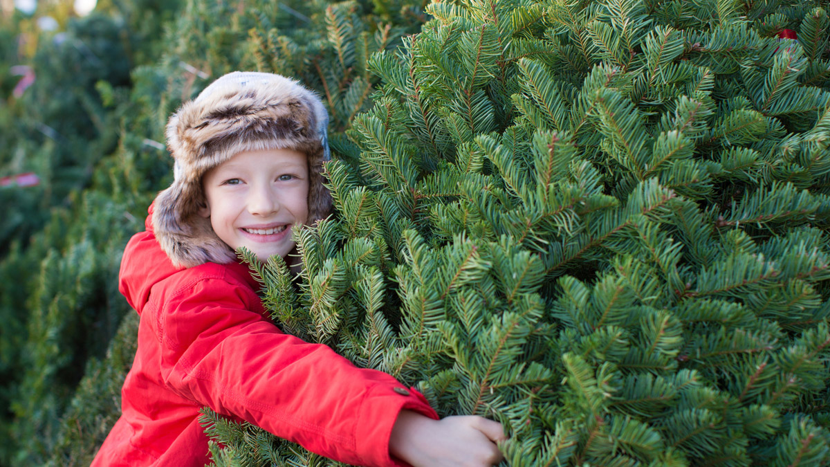 A smiling young boy is hugging a Christmas tree at a tree lot during winter.
