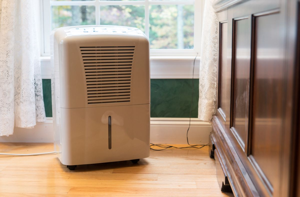 Dehumidifier in home