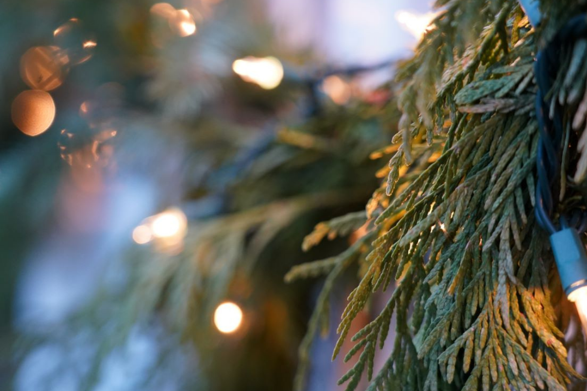Holiday lights and pine garland