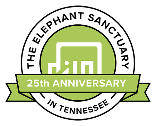 Visit the Elephant Sanctuary Virtually @ Online