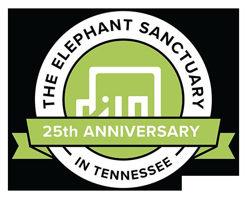 Visit the Elephant Sanctuary Virtually @ Online