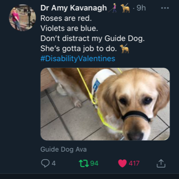 A photo of Amy's guide dog in harness. Roses are red, violets are blue. Don't distract my Guide Dog. She's gotta job to do.