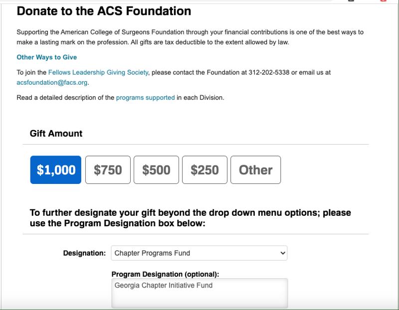 Georgia Chapter Initiative Fund