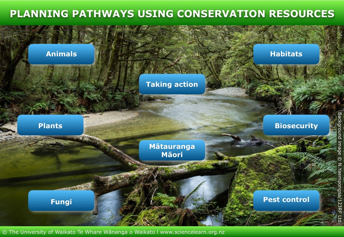 https://www.sciencelearn.org.nz/image_maps/83-planning-pathways-using-conservation-resources