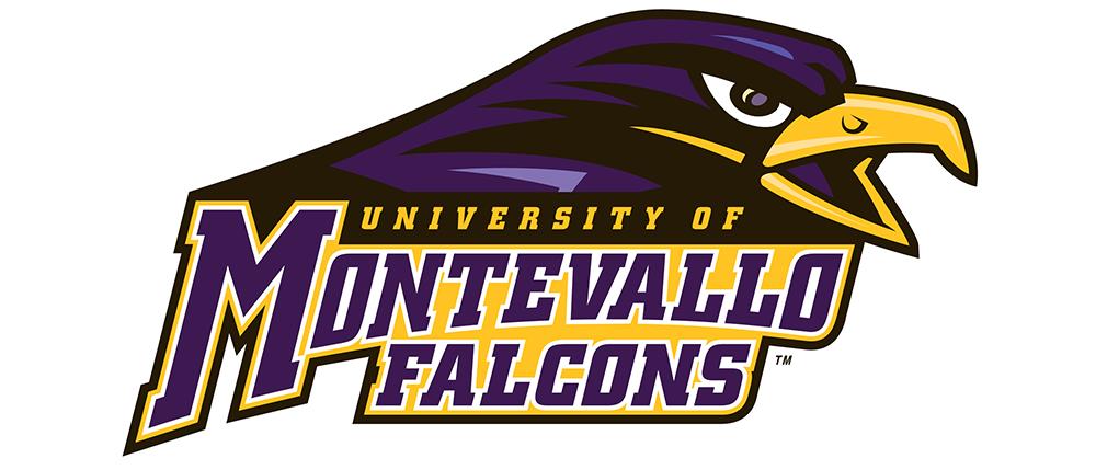 Montevallo Falcons logo