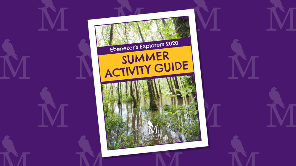 Ebenezer's Explorers 2020 Summer Activity Guide