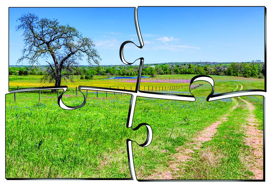 Puzzle pieces land
