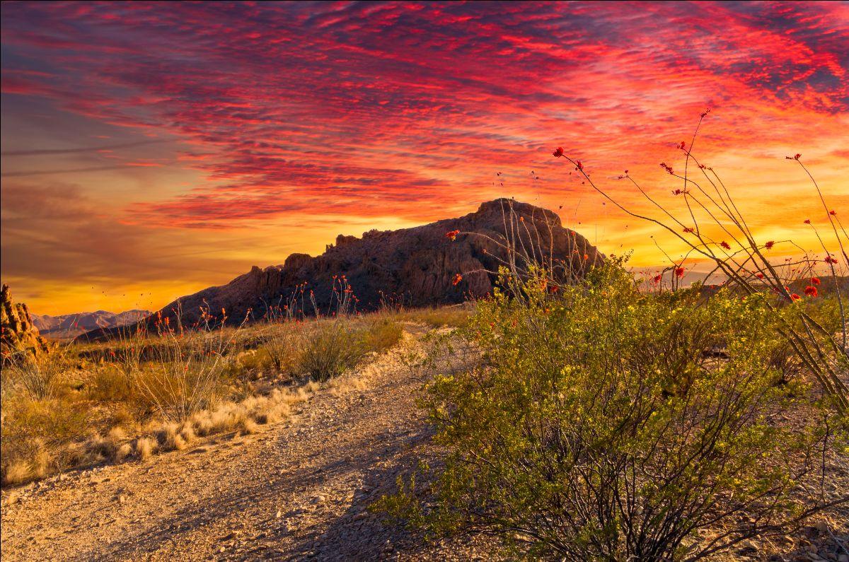 Sunset at Big Bend