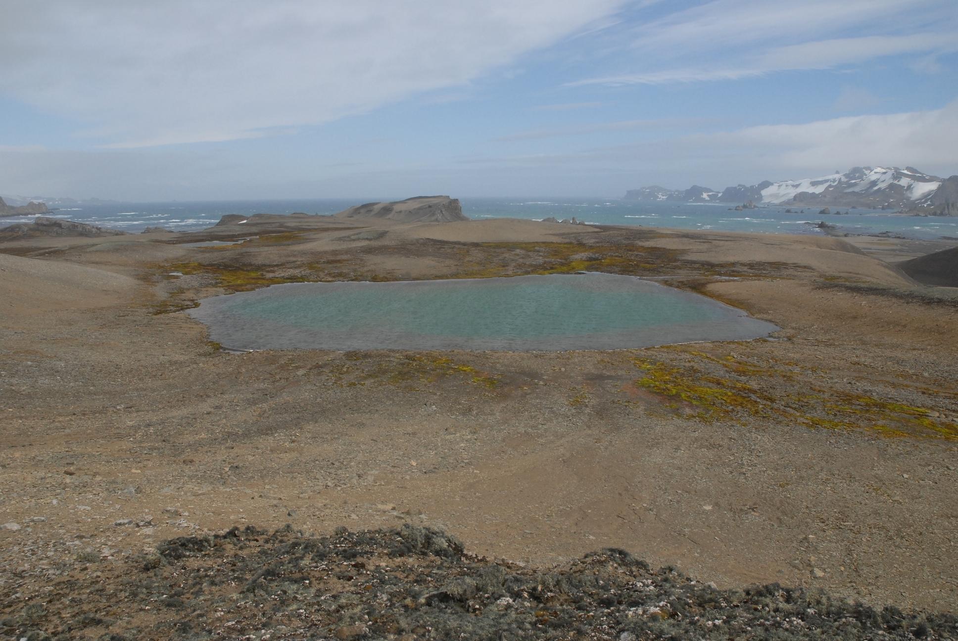 Figure 1. Lac sur Ile Livingston, Archipel des Shetland du Sud