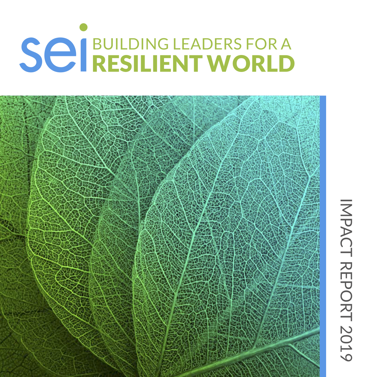 SEI Impact Report Cover Page