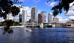 Tampa Weekly
