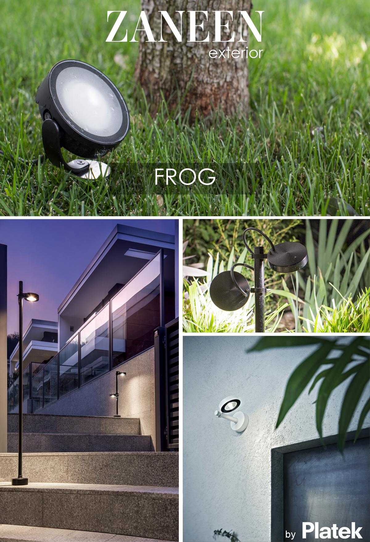 April 16, 2020 Frog