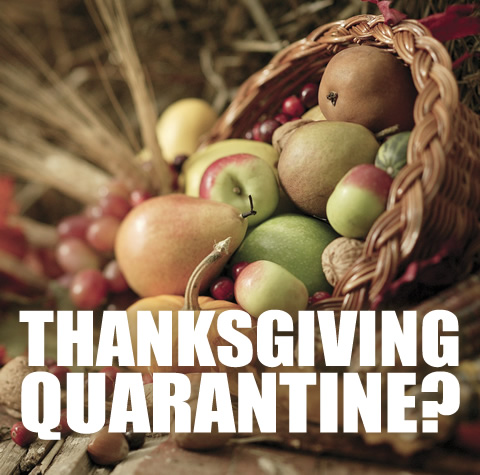 Thanksgiving Quarantine?