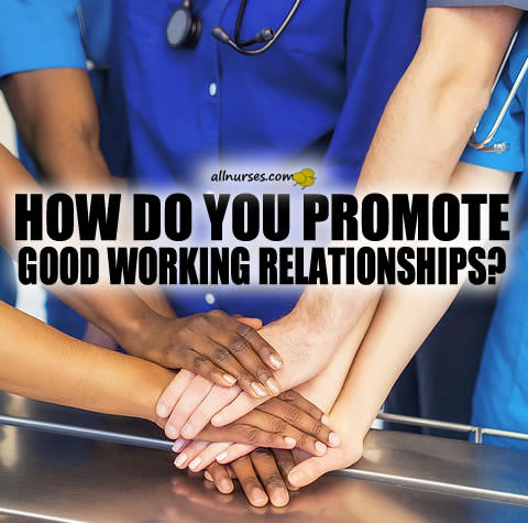 How do you promote good working relationships?
