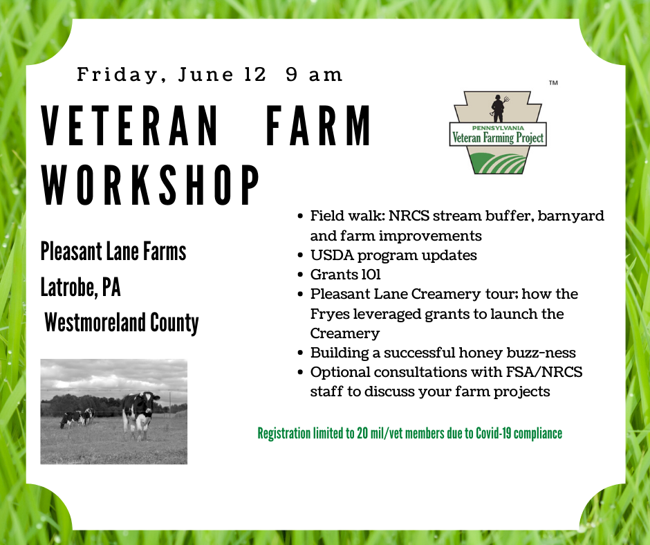 Graphic for Farm workshop