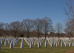 Graves at Arlington National Cemetery 2020