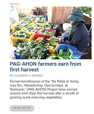 pag-ahon-farmers-earn-from-first-harvest-philrice-rice-agriculture